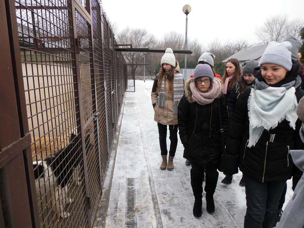 """""""Pomóż zwierzętom przetrwać zimę"""""""